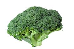 Nutritious broccoli sheaf isolated on white background Stock Photos