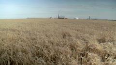 Barley & Fertilizer Plant Stock Footage