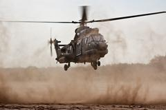Cougar Military helicopter - stock photo