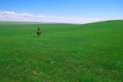 Horseback rider in grassland Stock Photos
