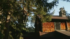 Worker Chainsaws Branches Over Power Lines - stock footage