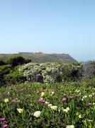 Espichel Cape landscape - stock photo