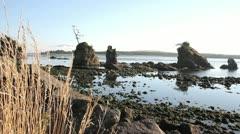 Lowtide at Garibaldi Beach along Oregon Coast 1080p Stock Footage