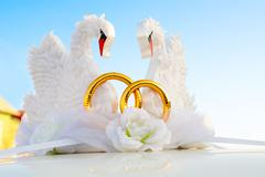 Swans as wed decoration Stock Photos