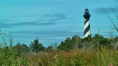 Lighthouse cape hatteras and wild flowers 02 Stock Footage