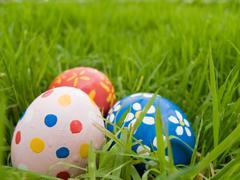 Easter eggs hidden in the grass Stock Photos