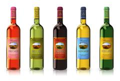 Set of wine bottles Stock Illustration