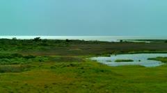 Marsh land outerbanks nc Stock Footage