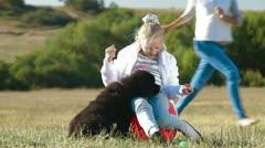 Girl Feeding Newfoundland Dogs Stock Footage