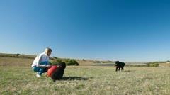 Woman Training Newfoundland Dog Stock Footage