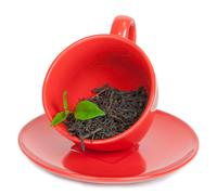 Teacup with black tea Stock Photos