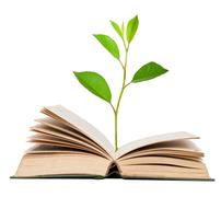 green sprout growing from open book - stock photo