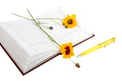 Empty open diary, yellow flowers and yellow ball point pen. Stock Photos