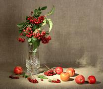 Bouquet of ashberry in glass vase and group of a red apples. Stock Photos