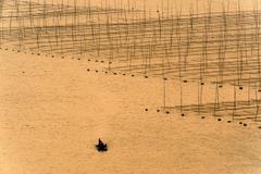 boat near the seaweed farm - stock photo