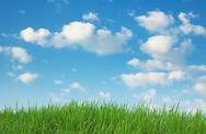 Stock Photo of green grass and blue sky