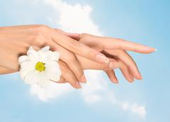 female hands with flower - stock photo