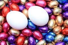 chicken eggs on a group of chocolate easter eggs - stock photo