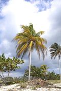tropical spot with clouds - stock photo