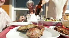 Seniors at barbecue table with beer Stock Footage