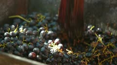 Homemade Wine Production Stock Footage