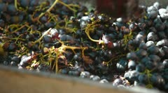 Homemade Winemaking Stock Footage