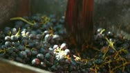 Stock Video Footage of Homemade Wine Production