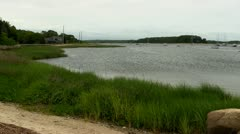 Inland cove shoreline Cape Cod Stock Footage
