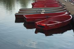 row boats on a lake - stock photo