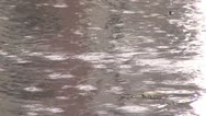 Stock Video Footage of Rain Close-Up 08