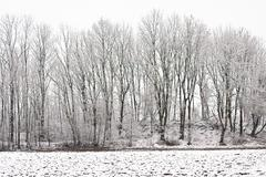 Stock Photo of winter landscape