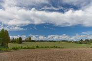 Farmland on early summer Stock Photos