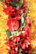 Red and yellow floral arrangement Stock Photos