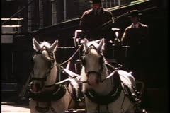 Horse dray, two team, pulling wagon full of beer, London, England, 1970's Stock Footage