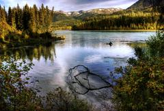 Kenai river in fall Stock Photos