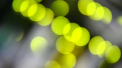 Ethernet lights in vivid yellow color blinking intensively. Stock Footage