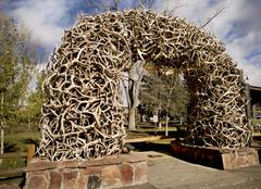 Stack of Antlers from the Elk reserve Stock Photos