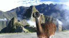 Machu Picchu with clouds, Cusco, peru, Southamerica Stock Footage
