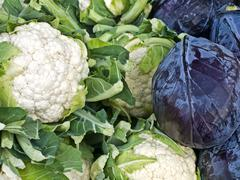 Stock Photo of cauliflower and blue kale