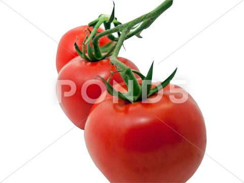 Stock photo of Three tomatoes close up