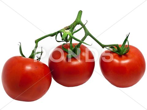 Stock photo of Tomatoes close up isolated on white background