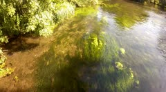Flowing Clear River Water With Underwater Plants Moving Stock Footage