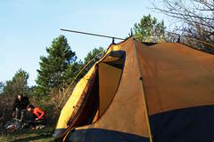 Tent in a forests campsite Stock Photos