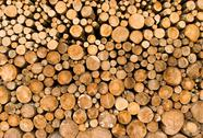 Stock Photo of stacked logs