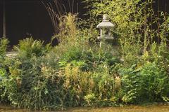 Stock Photo of japanese ceremonial tea garden