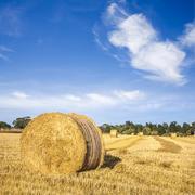 hay bales under deep blue summer sky - stock photo