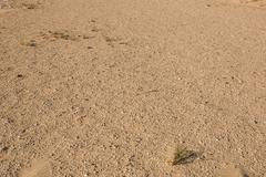 Stock Photo of sand background