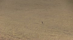 Lost man in the desert Stock Footage