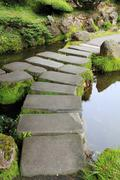 Mossy stepping stones in water Stock Photos