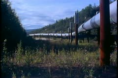 Trans-Alaskan Pipeline, wide shot, pan right, North Slope of Alaska Stock Footage